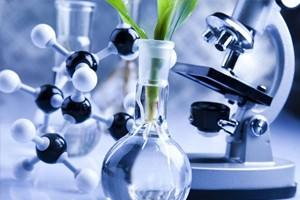 Биотехнологии – название или все же технологии?