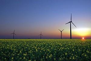 Развитие добычи возобновляемой энергии в других странах