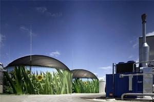 Временная стагнация производства биогаза