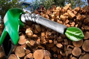 Есть ли польза от замещения биотопливом газа в Украине?