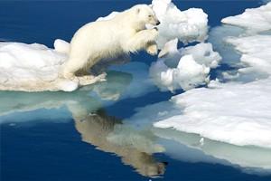 Что будет, если уровень мирового океана поднимется на метр