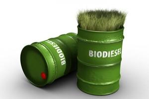 Aemetis расширяет рынок сбыта биодизеля в сфере логистики Индии за счет операторов грузоперевозок