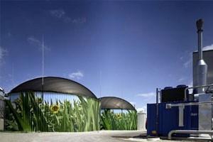 Во Львове на дрожжевом заводе устанавливается биогазовая станция