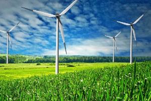 О проблеме производства биотоплива
