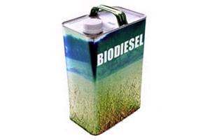 Как биодизель может увеличить рентабельность производства продукции животноводства