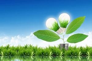 Инновации в сфере биоэнергетики