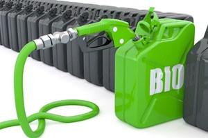 Специалисты из Университета Кардиффа улучшают выход биодизельного топлива