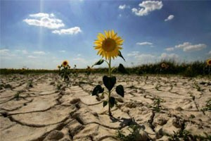 Почему изменения климата сильнее всего бьют по самым бедным