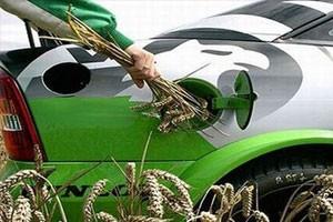 Замбийский производитель биотоплива ищет инвесторов