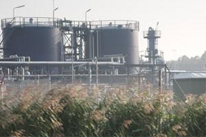 Компания Universal Biofuels переводит основных потребителей дизельного топлива в Индии на В100